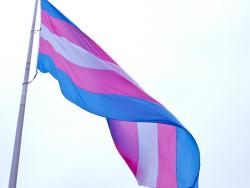 A_bit_of_controversy_surrounding_the_transgender_flag_san_francisco_(2012)_(8206733386)