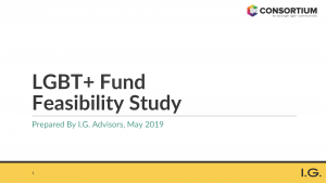 LGBT Fund Feasibility Study_Page_001